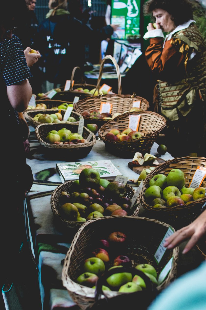 appleday_2016-15